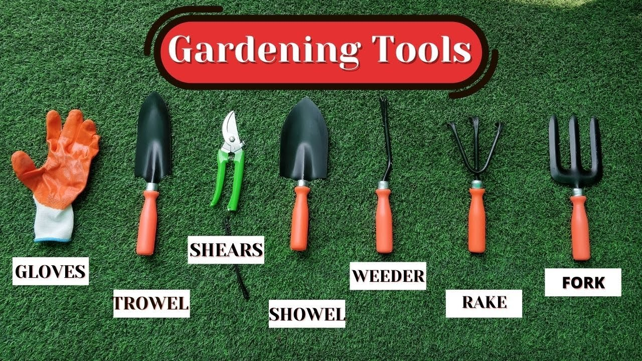 What Gardening Tools Do You Need?